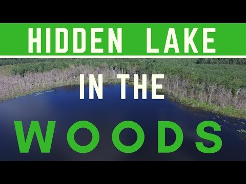 Hidden Lake In The Woods Fishing-Northern Michigan Kayak Fishing With Bassquatch Hunter