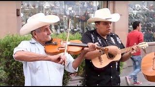 Trío Tordo Huasteco toca El Querreque en La Calle del Huapango en SLP