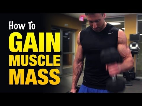 how to make gains in muscle size