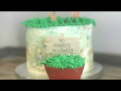 DIY Peter Rabbit Themed Cake & Cupcake for a Movie Party