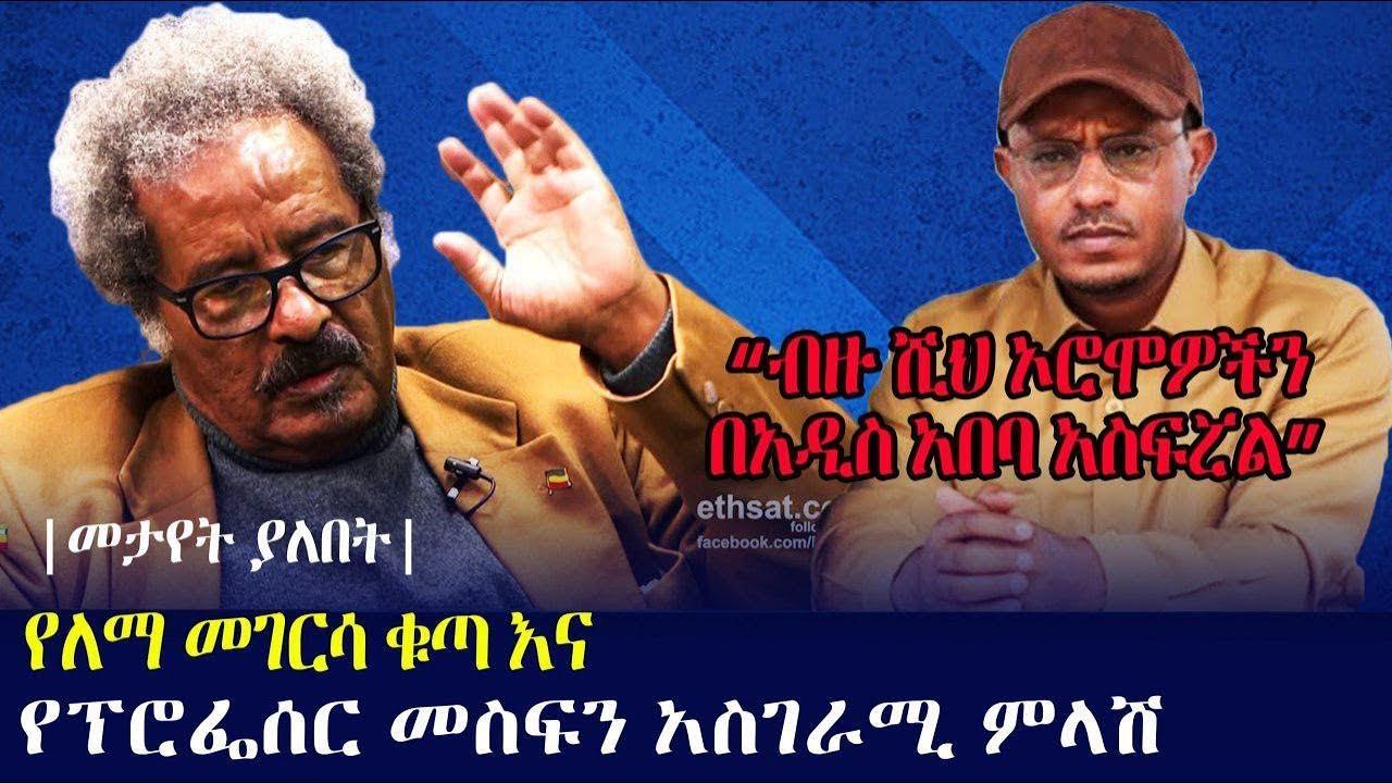 Professor Mesfin Woldemariam About Lemma Megersa's Recent Speech