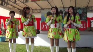 2011年11月13日(日)平成23年度りんご収穫祭(弘前りんご公園)からり...