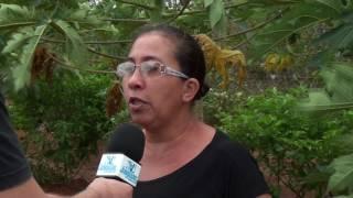 Dona Albaniza fala da produção e da expectativa de receber a posse da terra no acampamento Zé Maria do Tomé