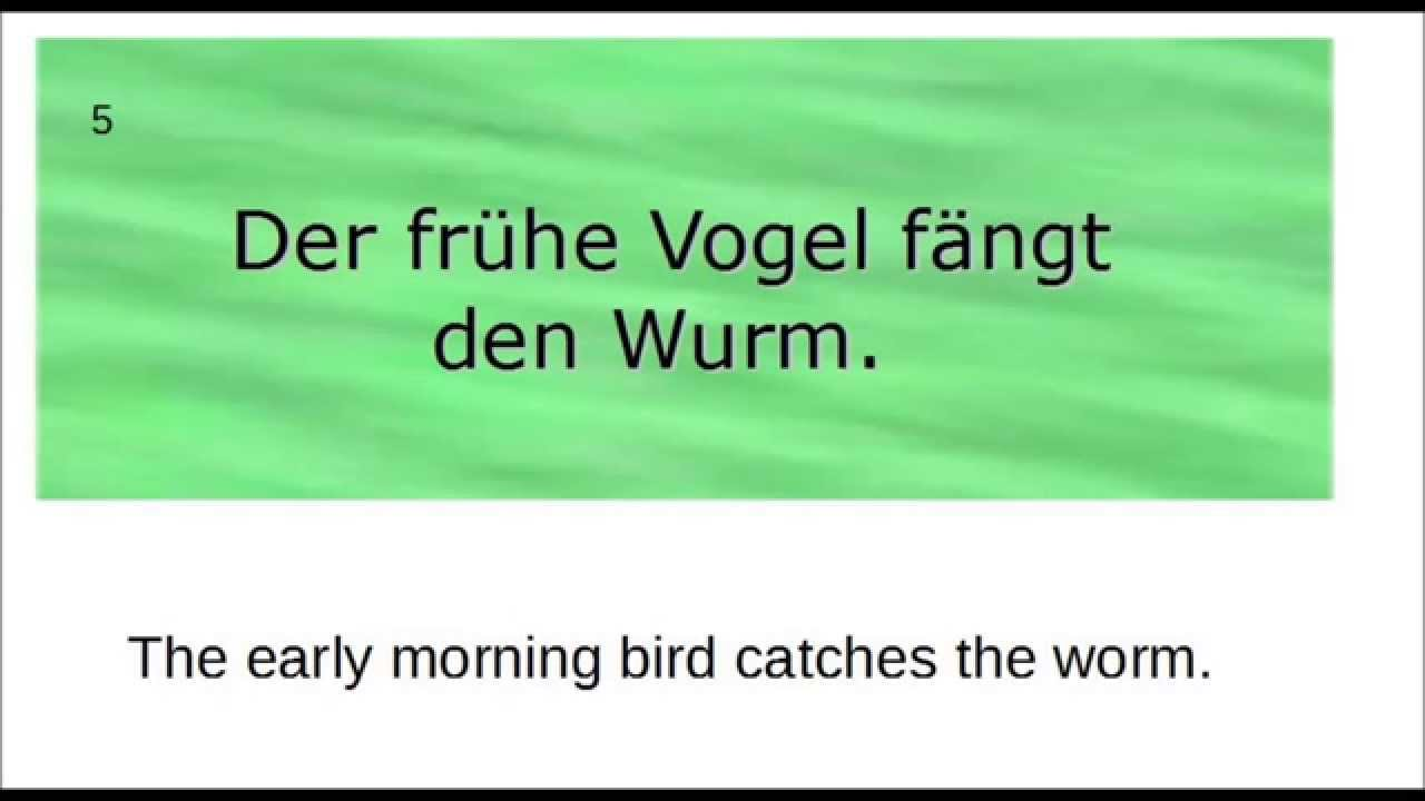 funny german quotes