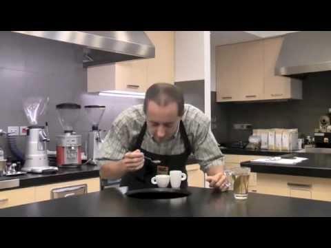 Jamaica Blue Mountain: the espresso cup tasting **