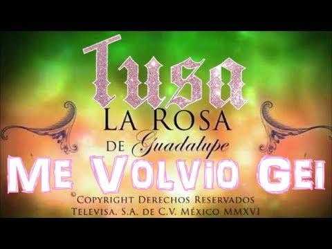 PARODIA TUSA ME VOLVIÓ GAY | LA ROSA DE GUADALUPE  (SKETCH)