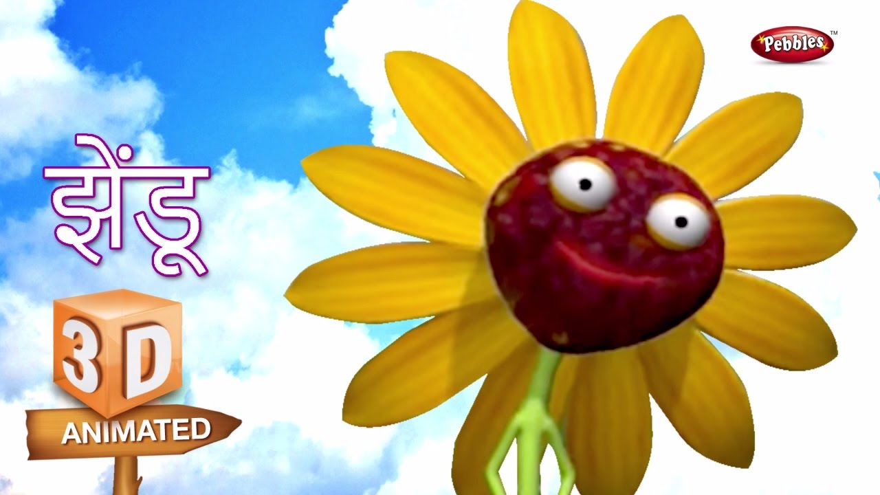 Marigold flower rhyme in marathi marigold flower rhyme in marathi marathi rhymes for children 3d flower rhymes izmirmasajfo