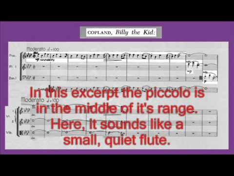 Instruments of the Orchestra-piccolo and alto flute - Part 2: Listening Examples