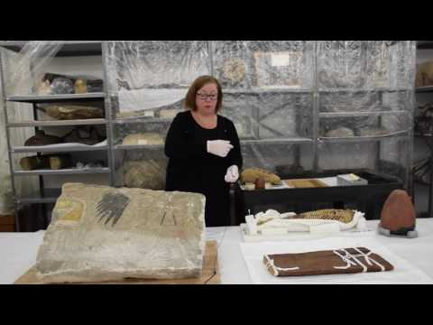 Scientists Live: Egyptologist Erin Peters