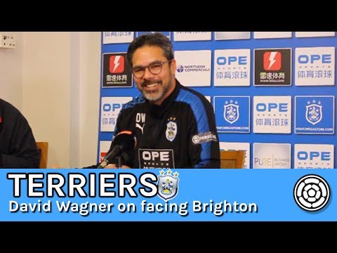 Terriers | David Wagner ahead of Brighton & Hove Albion test