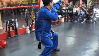 7 Star Praying Mantis Kung Fu | Bung Bu | 螳螂拳
