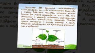 Презентация на тему Окружающий мир (3 класс)