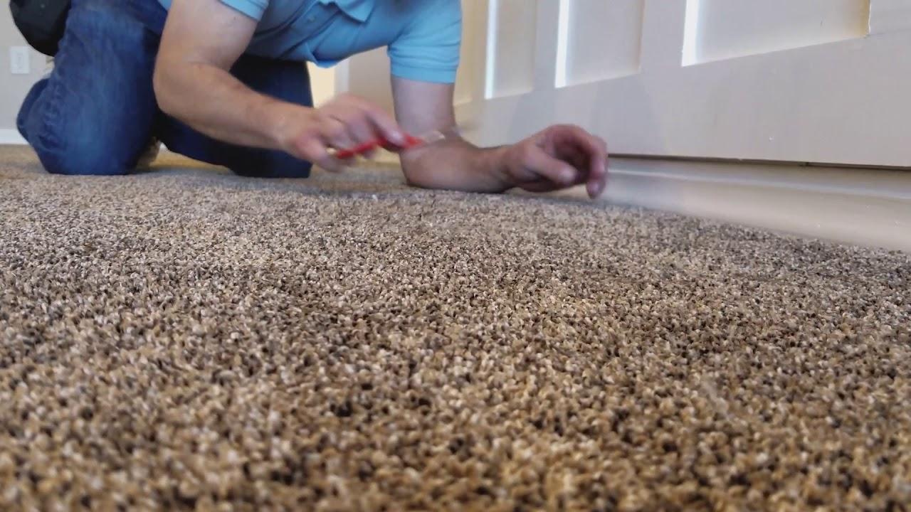 utah carpet cleaning service