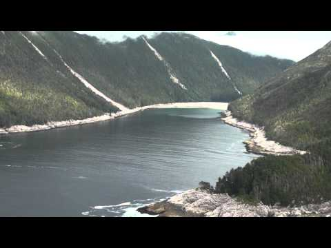 Veta Bay - Baker Island - Southeast Alaska - aerial surveys