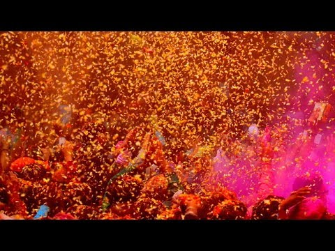 Watch: Foreign nationals celebrate Holi with flowers in Vrindavan