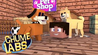 Minecraft: ADOTAMOS UM CACHORRO! (Chume Labs 2 #67)