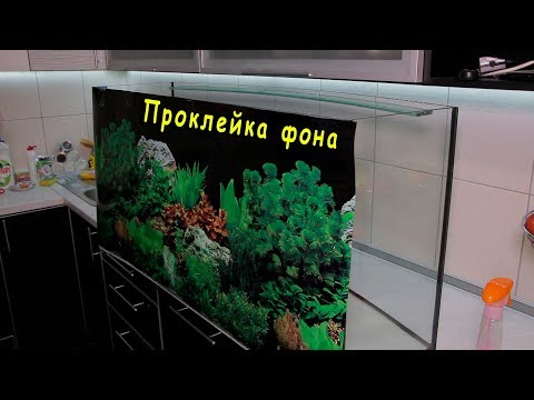 Как приклеить задний фон на аквариум! С помощью глицерина или вазелинового масла.