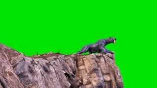 Green Screen Monster Cougar Jump Attack - Footage PixelBoom