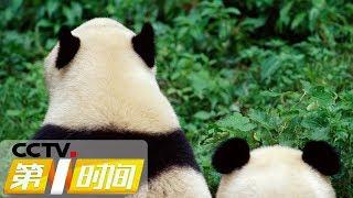 《第一时间》 20190927 2/2  CCTV财经