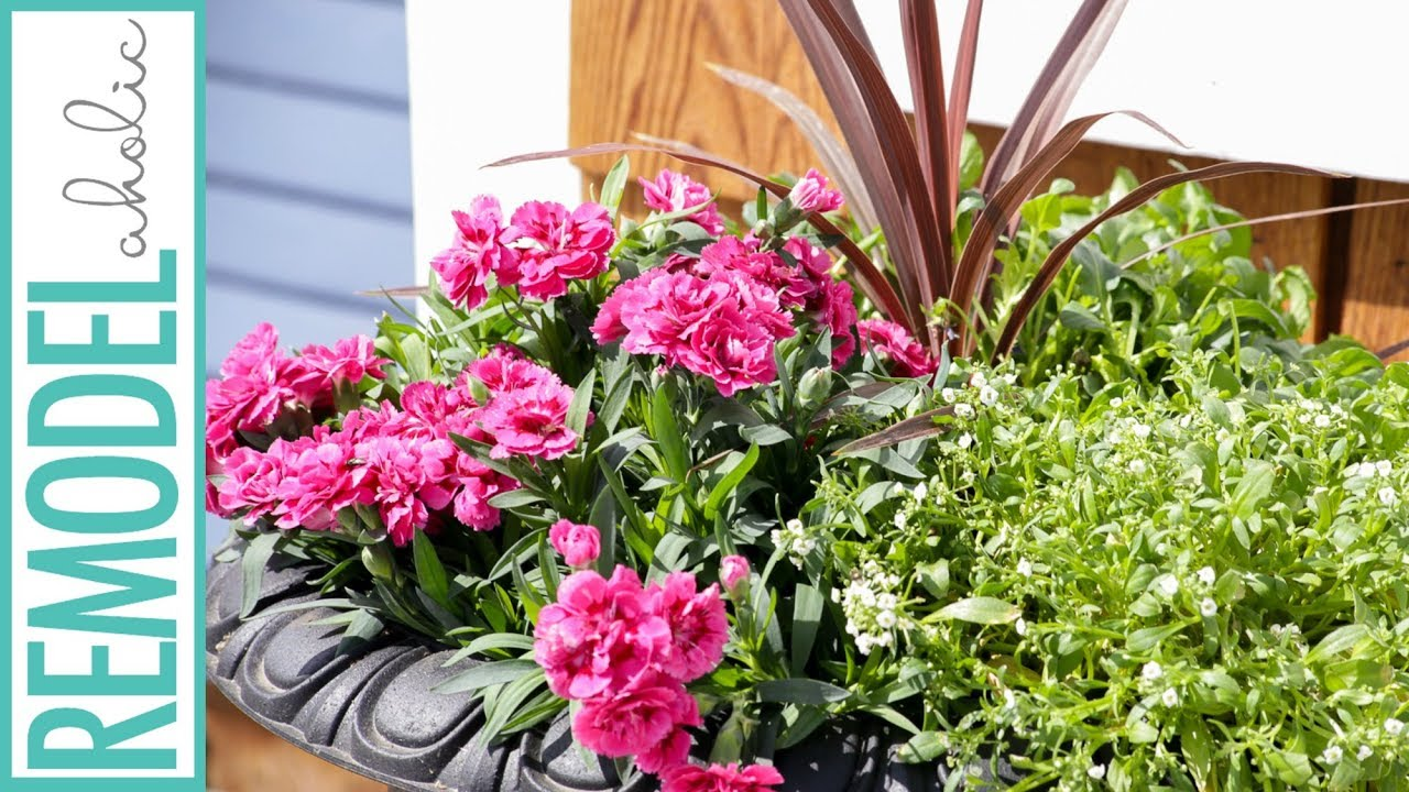 Easy Tips For Planting Beautiful Outdoor Flower Pots Youtube