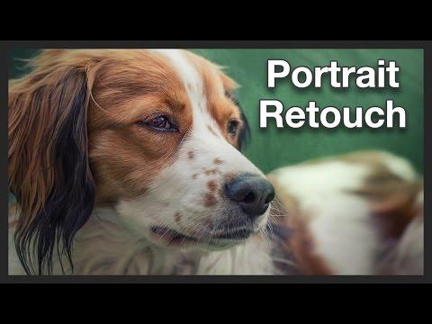 Dog Photo | Portrait Retouching | Photoshop Tutorial