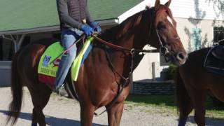 Kentucky Derby 2017: Irish War Cry - Graham Motion