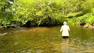 Fly Fishing on a Westcountry stream.