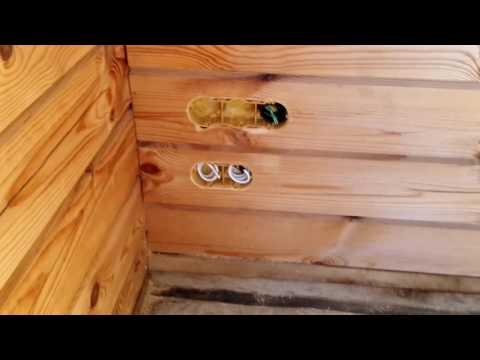 Скрытая электропроводка в деревянном доме из профилированного бруса