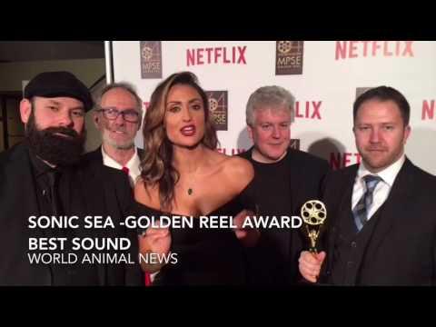 Sonic Sea -Winner Of The Golden Reel Award For Best Sound
