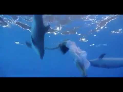 Dance With Dolphins. Dolphinarium NEMO In Yerevan. Catherine Bizyukina..mp4