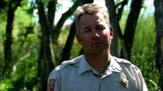 How to Become a Game Warden : How to Become a Game Warden in Tennessee