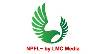 npfl 2015 2016 first quarter review