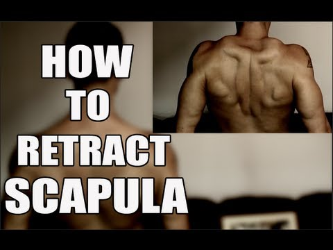 The Best Cue for Scapula Retraction