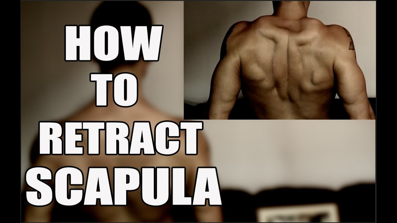 The Best Cue For Scapula Retraction Youtube