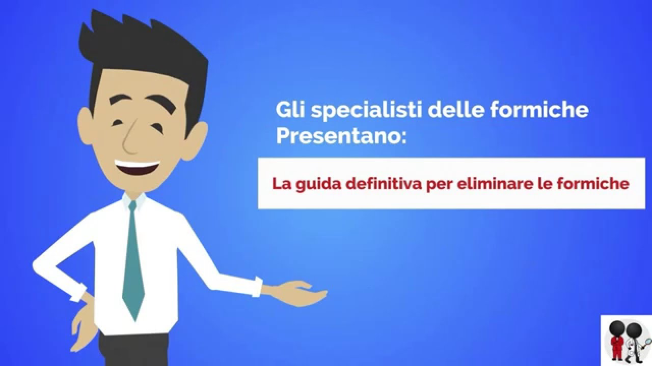Come eliminare le formiche la guida definitiva youtube for Eliminare le formiche