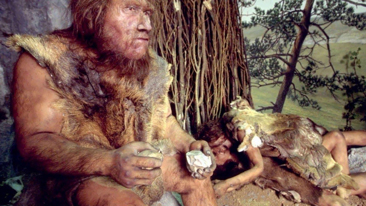 尼安德塔人 - 絕種的人顃