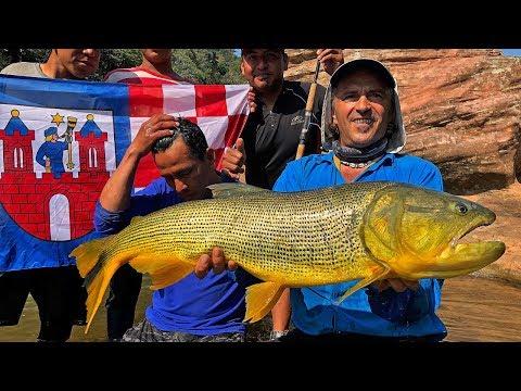 Rio Dorado - Bolivia 2019 - Golden Dorado.