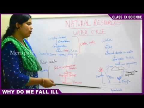 9 Class IX CBSE Science Natural Resources Part 4