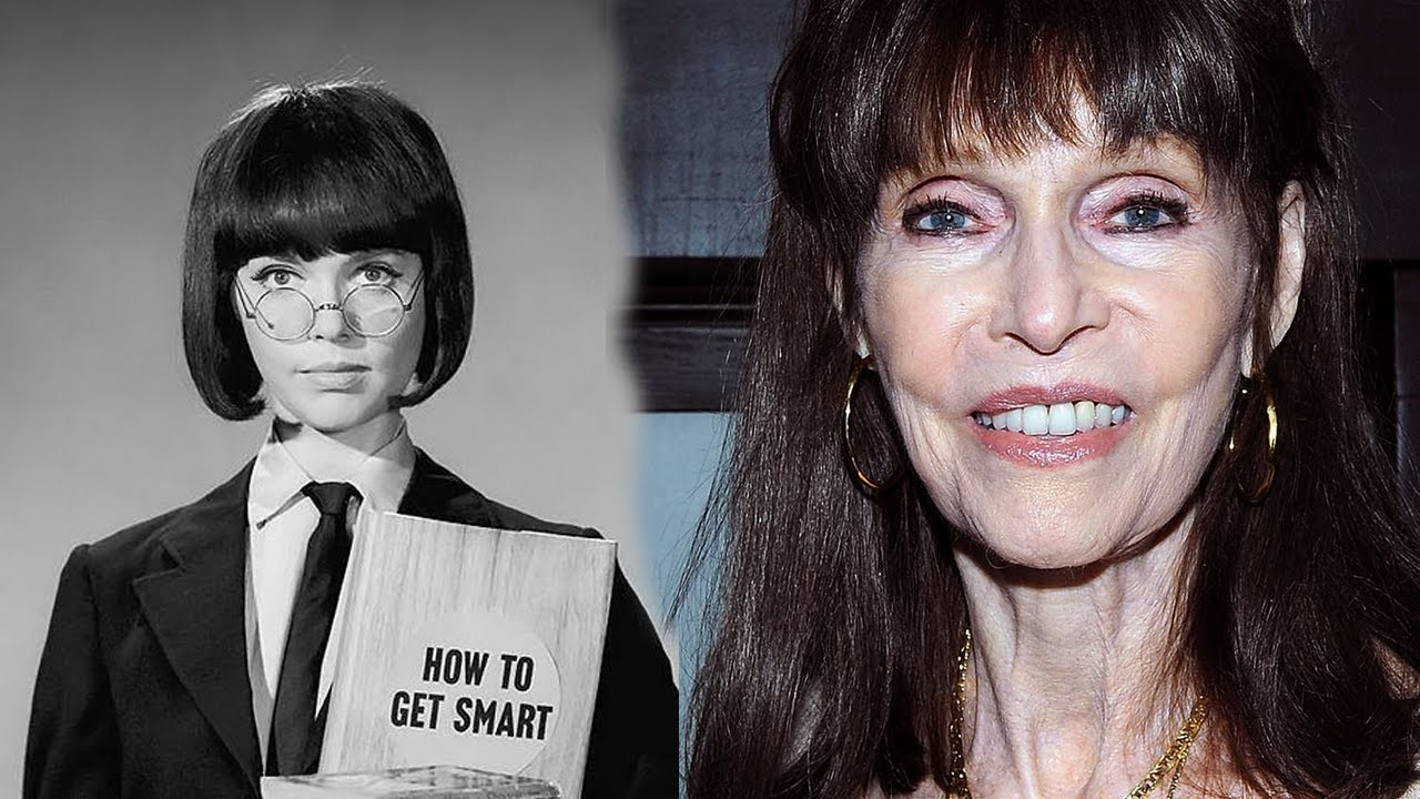 Download What Really Happened to Barbara Feldon - Star in Get Smart