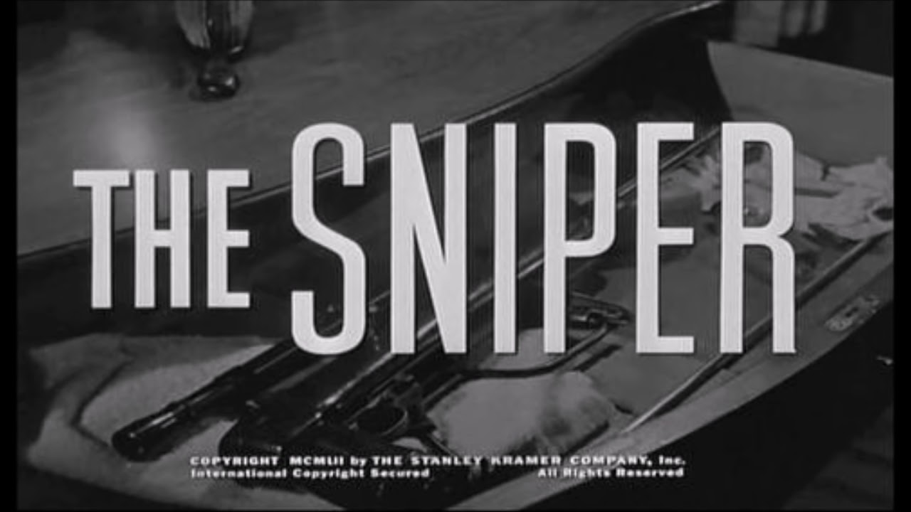 liam o flaherty s the sniper Not a low-level quiz with simple comprehension questions like most assessments online, this 2-sided, 20-question multiple choice quiz on liam o'flaherty's short story.