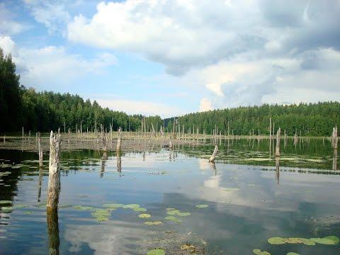 Озеро Смертное не расстается с самолетом