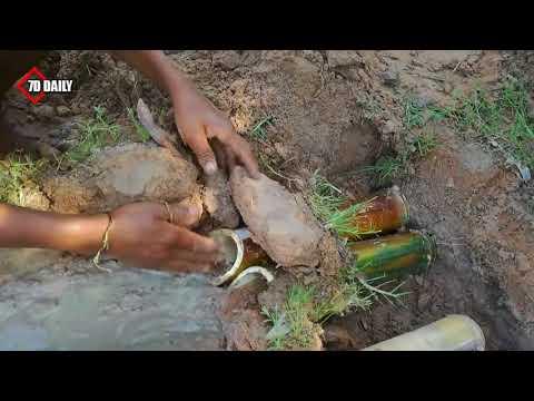Hausa Tv Mai auƙi Sai Murfi Zamin Rifaye K -yan 'ara Yaza Muna Sama Kifaye Ka Dawa Ya Tmfani Aa D