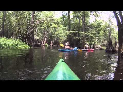 Little Pee Dee River Paddle