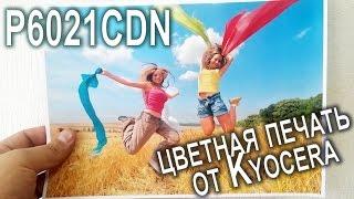kyocera ECOSYS P6021cdn обзор