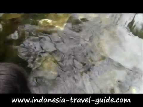 Tilanga Travel Guide - TORAJA TRAVEL GUIDE