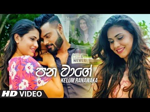 Pana Wage - Kelum Ranawaka Official Video 2019 | New Sinhala Music Videos 2019