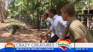Karl meets some of the world's most dangerous animals -  Robert Irwin