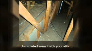 Attic Inspection Information