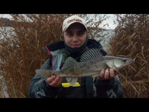 Рыбалка на Рузском водохранилище в конце октября. Судак.