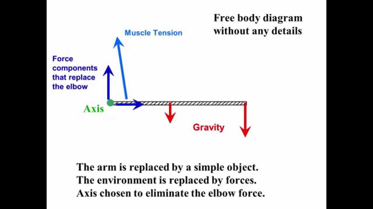 153: Free body Diagrams with torque  YouTube